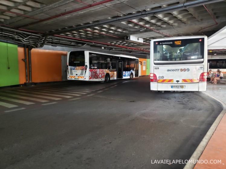 ônibus para cabo da roca portugal